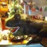 Rexy The Magical Dinosaur