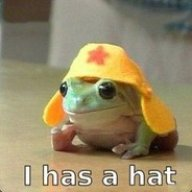 Awesome Froggerino